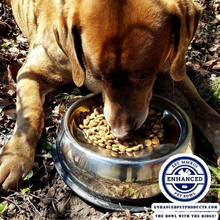 Load image into Gallery viewer, Labrador eating from enhanced pet bowl with logo on the bottom right corner