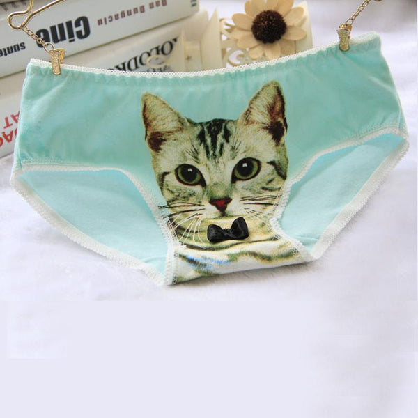 Free Cat Briefs - Just Pay Shipping