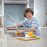 American Standard Pekoe 1-Handle Pull Down High-Flow Kitchen Faucet, 4332.310 - Showroom Sinks