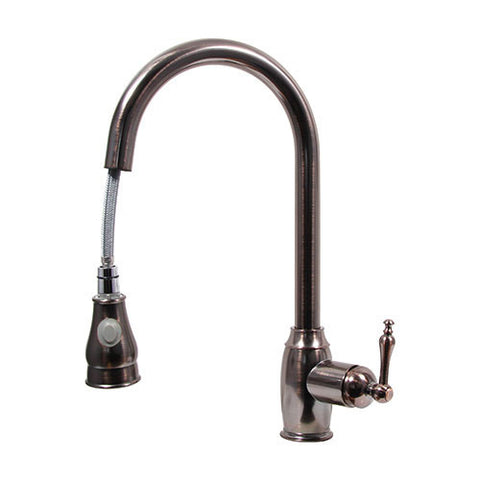 Dyconn Ponto Kitchen Faucet - Antique Oil-Rubbed Bronze TB001-A03ORB