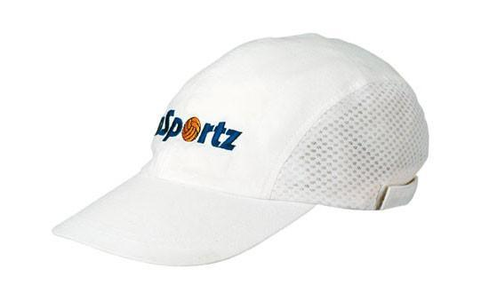 Headwear Brushed Cotton (3812)