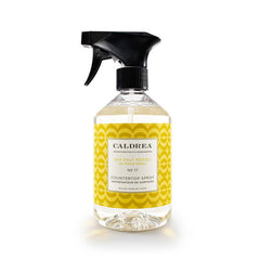 Neroli/Seasalt Counter Top Spray 16 oz - Rothman & Co.