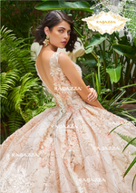 Quinceanera Dress by Ragazza DV32-532