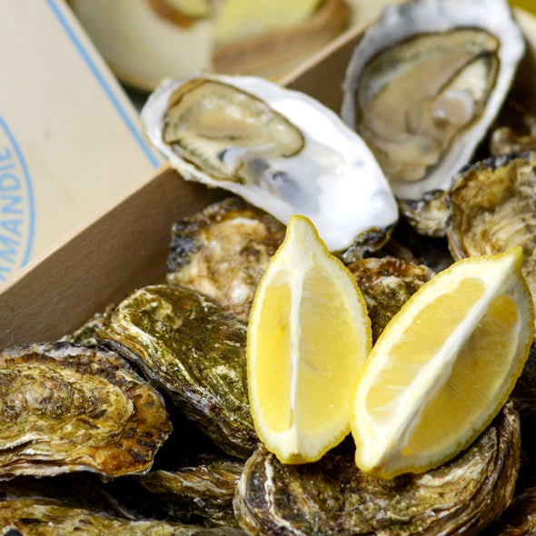 PRE-ORDER FOR 21.01 - Fine oysters - Normandy, France
