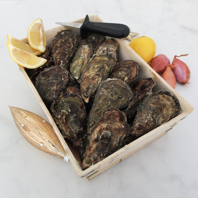 PRE-ORDER FOR 24.09 - Fine Sélection Oysters - Cupped from Marennes Oléron, France - 24 pieces