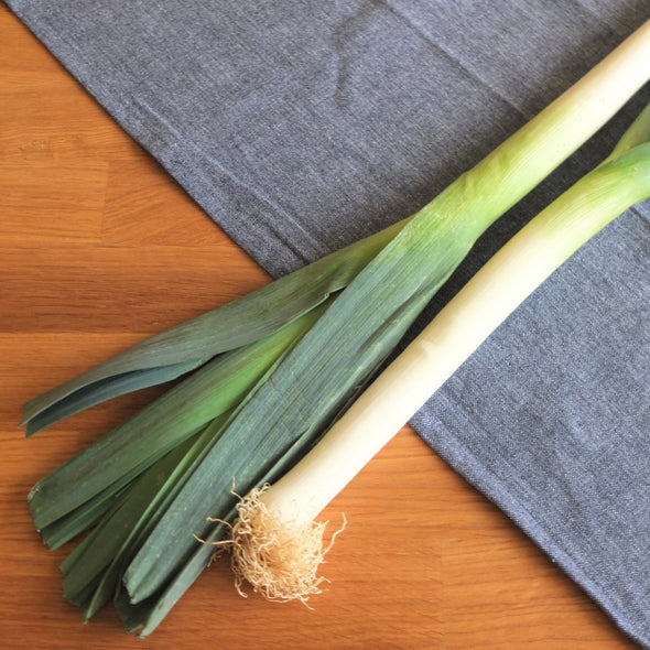 Leeks vegetable - Maison Duffour