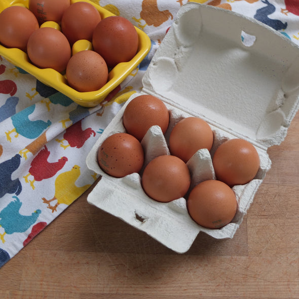 Free-Range Organic Eggs, U.A.E. - from 6 pieces