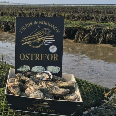 PRE-ORDER FOR 29.10 - Special oysters - Normandy, France