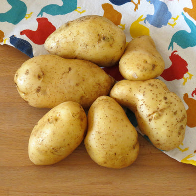 Potatoes Regular, Organic, Lebanon - 500Gr