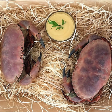 Fresh Brown Edible Crab, Brittany -  2 pieces per portion