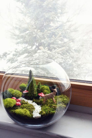 Everything You Need To Know About The Terrarium Trend Kismet Decals