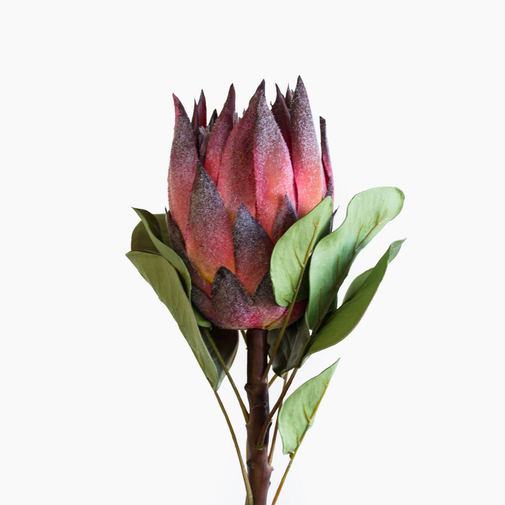 Gorgeous and realistic artificial burgundy coloured king protea