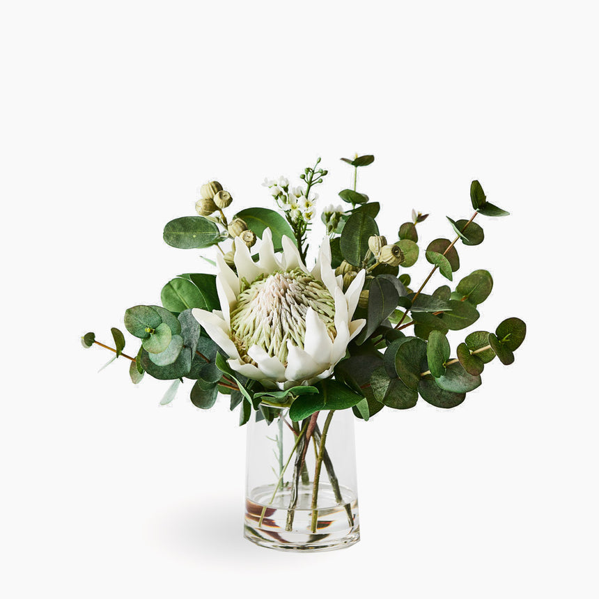 White king protea mix (small)