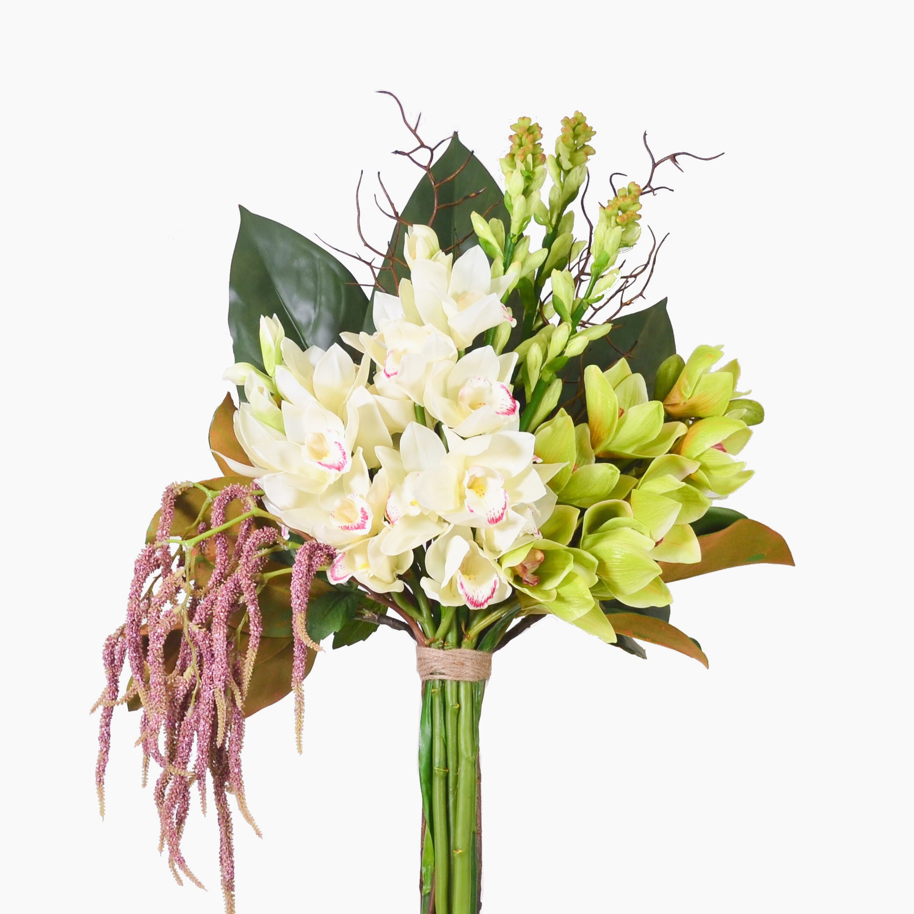 Cream and green cymbidium orchids (large)
