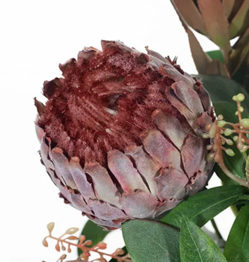 Burgundy protea, mixed native foliage and gumnuts (Small)