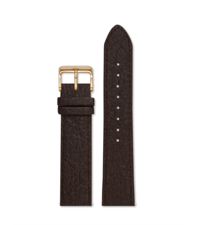 Piñatex Dark Brown with brushed gold buckle | 20mm