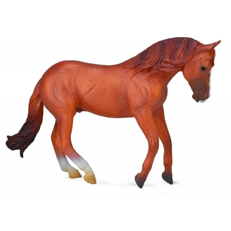 CollectA - Atlas the Australian Stock Horse Chestnut Standing-The Creative Toy Shop