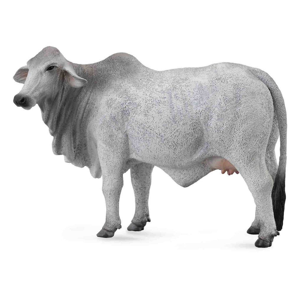 CollectA -  Benita the Brahman Cow Grey - CollectA - The Creative Toy Shop