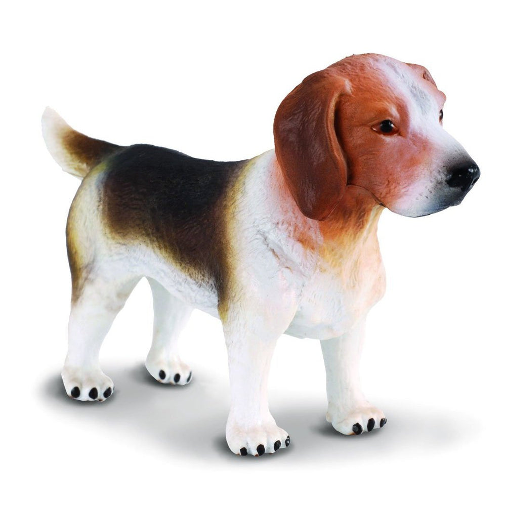 CollectA -  Betty the Beagle - CollectA - The Creative Toy Shop