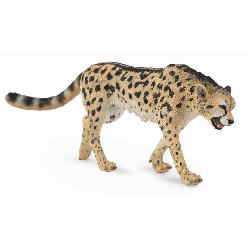 CollectA - Chatwin the King Cheetah-The Creative Toy Shop