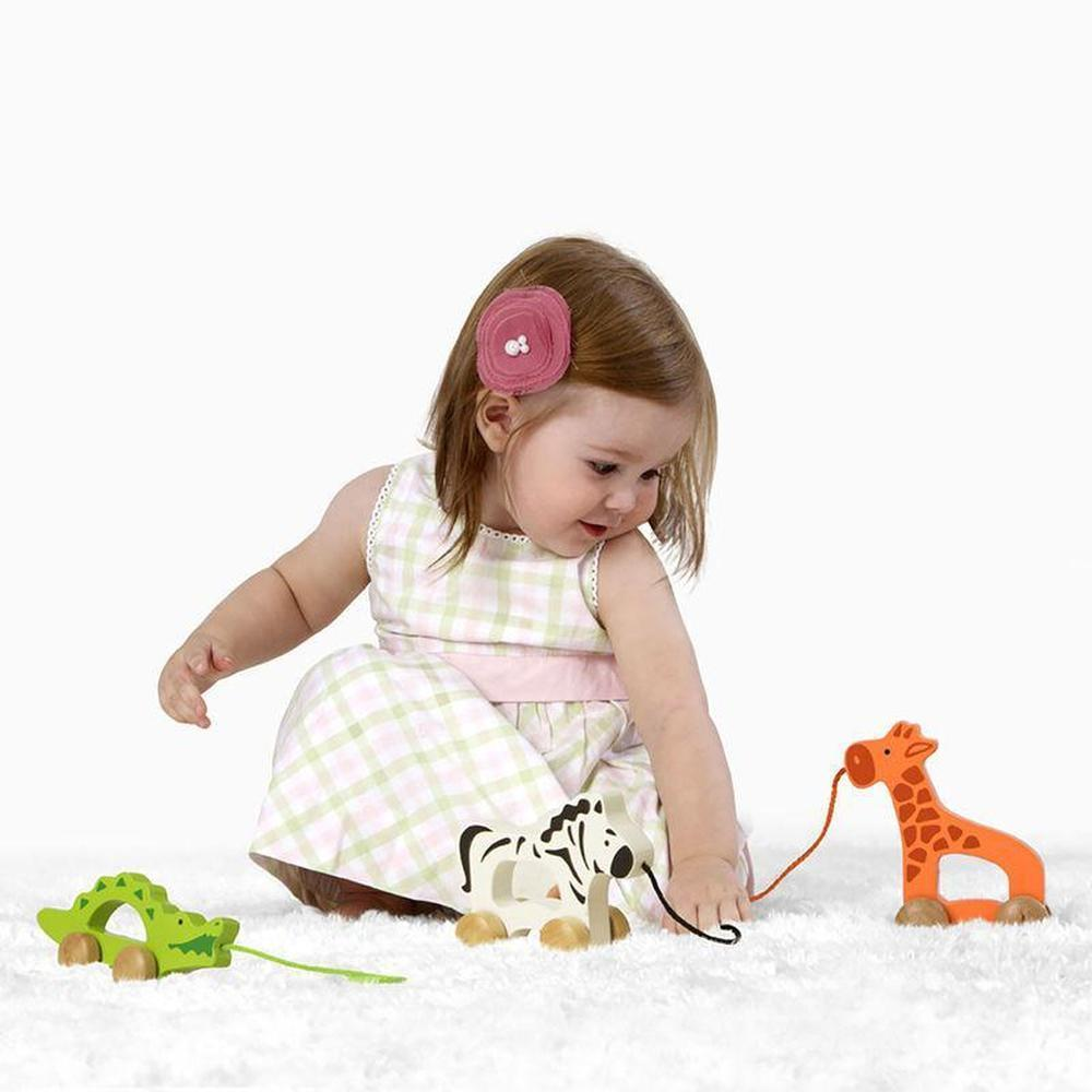 Hape Push and Pull Zebra-Push & pull along-The Creative Toy Shop