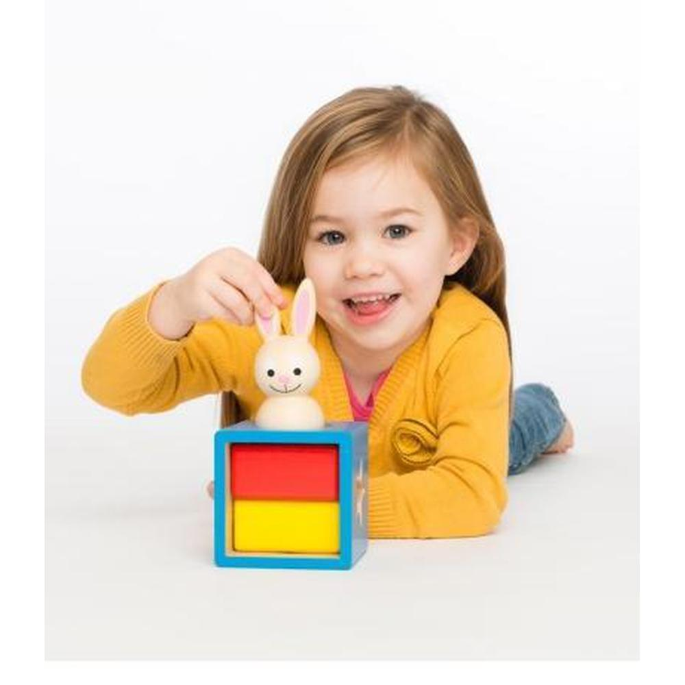Smart Games - Bunny Boo - Smart Games - The Creative Toy Shop