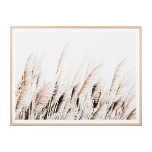 Middle of Nowhere - Pampas Breeze Framed Print - Magnolia Lane
