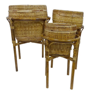Bago Rattan Baskets - Magnolia Lane