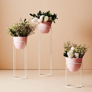 Halo Plant Stand | Various Sizes B+W - Magnolia Lane