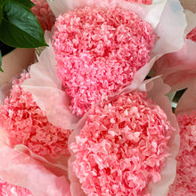 Load image into Gallery viewer, Preserved Hydrangea | Candy Pink - Magnolia Lane