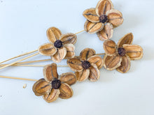 Load image into Gallery viewer, Jacaranda Flower - Dried Flowers - Magnolia Lane
