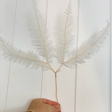 Preserved Fern - White | Angel Wings - Magnolia Lane