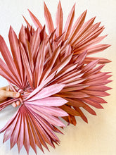 Load image into Gallery viewer, Dried Sun Palm Leaves | Salmon - Dried Flowers - Magnolia Lane