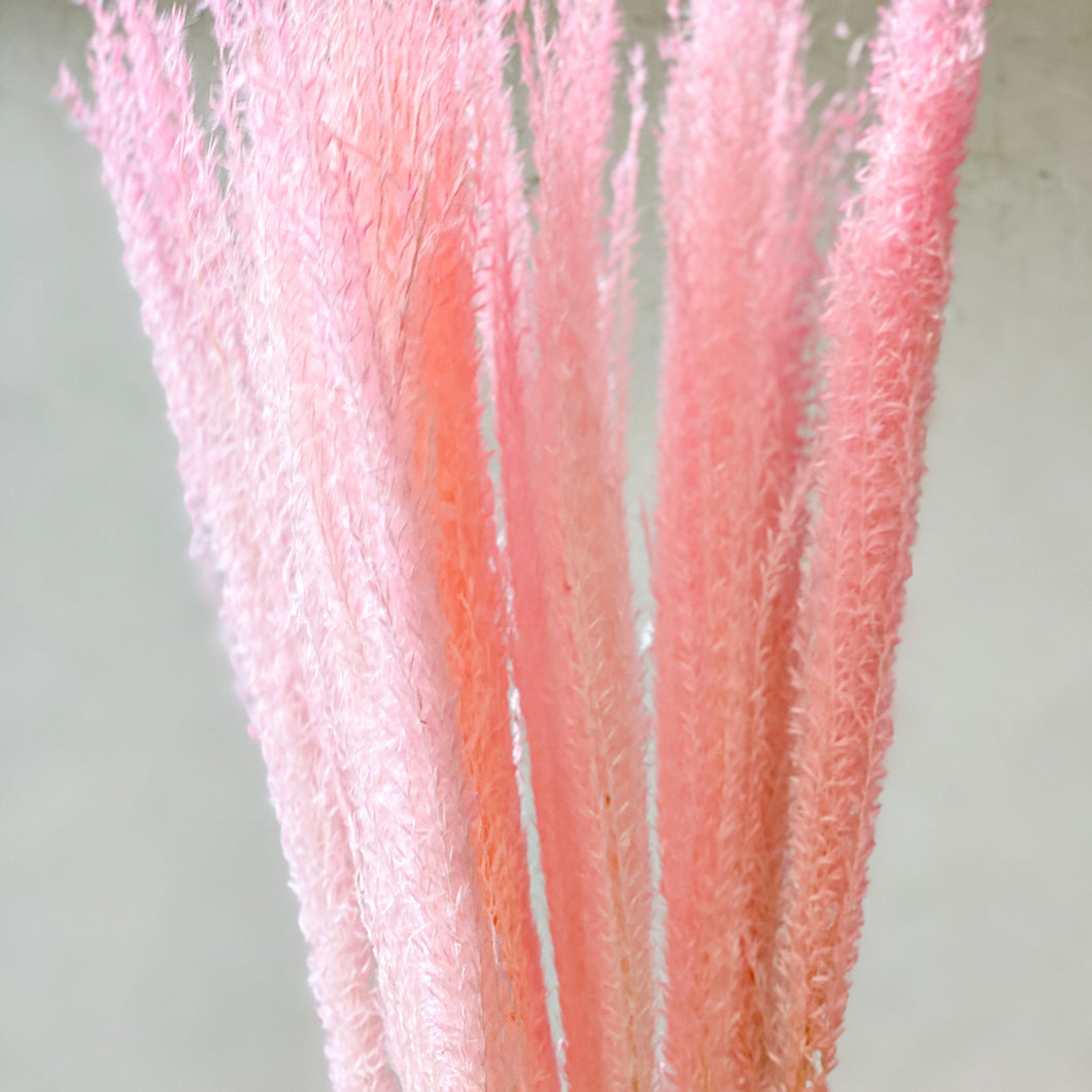 Horse Tail Whisk | Pink - Magnolia Lane