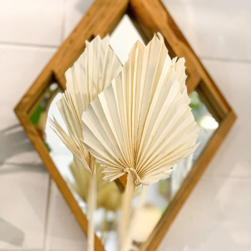 Dried Palm Spear - Small | Creme - Magnolia Lane