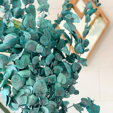 Preserved Gum | Teal - Magnolia Lane