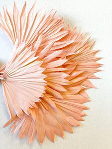 Dried Sun Palm Leaves | Pale Pink - Dried Flowers - Magnolia Lane