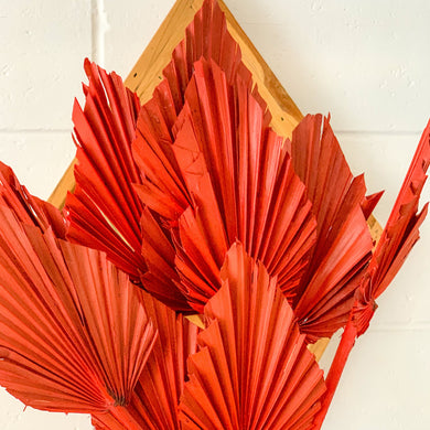 Dried Palm Spear - Small | Blood Orange - Magnolia Lane