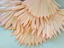 Load image into Gallery viewer, Dried Sun Palm Leaves | Pale Pink - Dried Flowers - Magnolia Lane