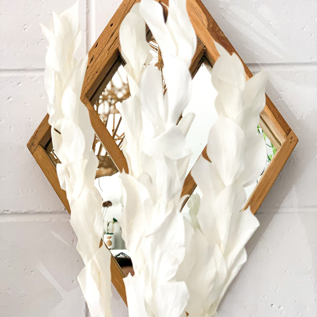 Preserved Leaf | White (WS) - Magnolia Lane