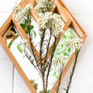 Preserved Rice Flower | White (WS) - Magnolia Lane