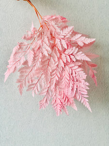 Preserved Leather Fern | Pink | Magnolia Lane