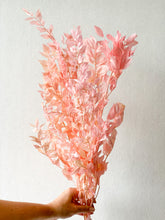 Load image into Gallery viewer, Preserved Ruscus | Shades of Pink - Dried Flowers - Magnolia Lane