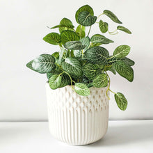 Load image into Gallery viewer, Tuscan Planter White Large | 16cm - Magnolia Lane