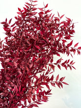 Load image into Gallery viewer, Preserved Ruscus | Burgundy - Dried Flowers - Magnolia Lane
