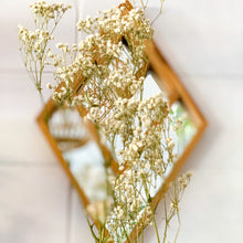 Load image into Gallery viewer, Preserved Baby's Breath | White (WS) - Magnolia Lane
