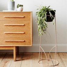 Load image into Gallery viewer, Malia Plant Stand | Black - Magnolia Lane