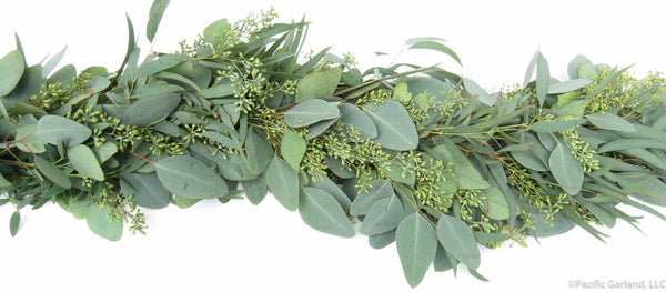 Seeded Eucalyptus Fresh Premium Garland By Pacific