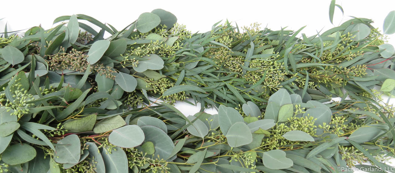 Beautiful Designers Choice Three Item Fresh Garland With Seeded Silver Dollar And Willow Eucalyptus Side