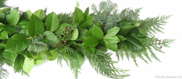 Fresh Salal Berries Amp Evergreens Holiday Garland By